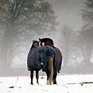 Friends forever by Caroline Anderson