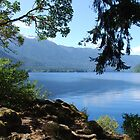Crescent Lake, Wa by Charles Hallsted