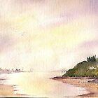 Welsh Coast  by Neil Jones