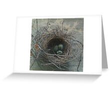 Nest Series: 1 Greeting Card