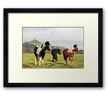 A Country Scene Framed Print