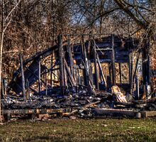 Skeletal Bones of  Burnt-Out Home by Terence Russell