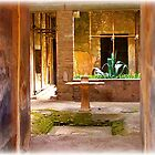 Uncovered Home in Pompeii by rocperk