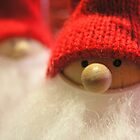 Christmas - Fuzzy Santa by Deanna Roberts Think in Pictures