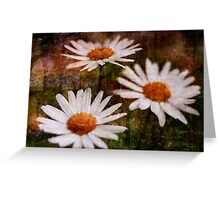 Oops-a-daisies Greeting Card