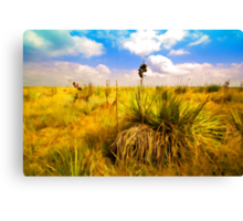 """Panhandle Plains of Oklahoma"" Canvas Print"