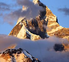 Majestic Machapucchare by Harry Oldmeadow