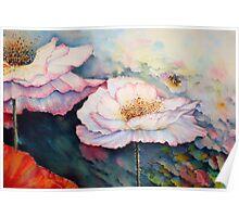 The Poppy pollenator ! Poster