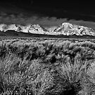Bishop Range--Eastern Sierra by Chris Morrison