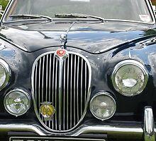 Vintage Jaguar by briandhay