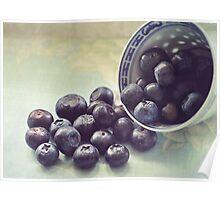 blueberries.. Poster