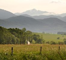 Pyrenees seen from the Languedoc by Catherine Ames