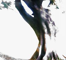Tree - Lightpainting II by hinting