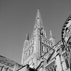 Norwich Cathedral by yankeehal