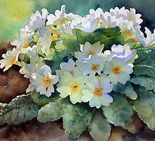 Ann Mortimer's Watercolour Flowers by Ann Mortimer
