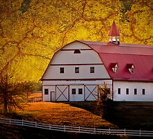 Red Roof Barn by Phillip M. Burrow