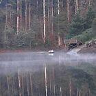 barrington mist 2 by Paul Campbell  Photography