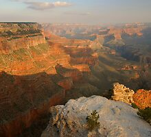 Yavapai Point Morning by Stephen Vecchiotti