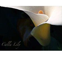 Calla Fornia Photographic Print