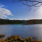 Rodley Nature Reserve ~ Pano ~ by Sandra Cockayne