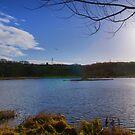 Rodley Nature Reserve ~ Pano ~ by Sandra Cockayne