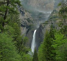 Lower Yosemite Falls by Stephen Vecchiotti