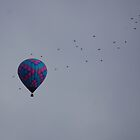 birdds and balloons by Amanda Huggins