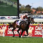 Black Caviar  by Matt Wilson