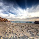 Trails Of Life II by Chris Paddick