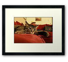 Kitty_Waiting on the Return of Kitty Master Framed Print