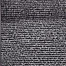 """""""Dictionary 34"""" (kidney stone-latitudinarian) by Michelle Lee Willsmore"""