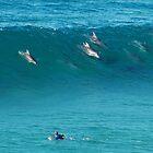 No surfboards by Neville Gafen