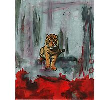 Tiger Abstract Photographic Print