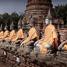 Buddha Row by Scott Harding