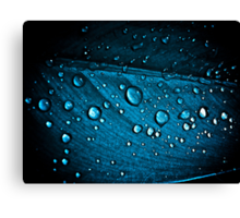 Blue Diamonds...: Sold, Explore Featured work:  10 Featured Works Canvas Print