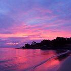 Sunrise @ Peirmont, Australia by Ali Brown