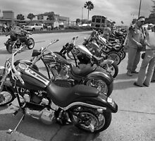 Bikes and bikers BW by Larry  Grayam