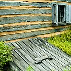 Log Cabin  Home - detail by   Paul W. Faust