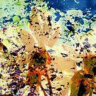abstract blossoms by karolina
