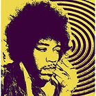 JIMI HENDRIX-ACID TRIP by OTIS PORRITT