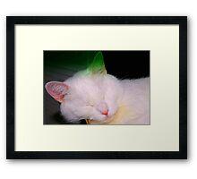 Box heaven Framed Print