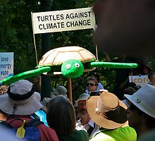 turtles against climate change by jayview