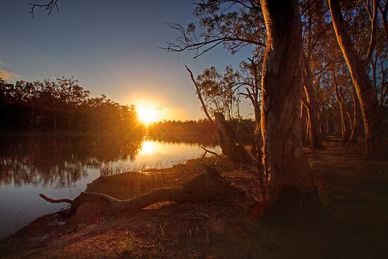 Sunset on the Banks - The River Murray Above Renmark by Mark Richards