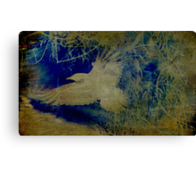 A Touch of Japan Canvas Print