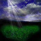 Let There Be Light by shall