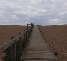 Walk on Chesil Beach. by Emma Coles