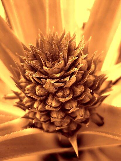 Otherworldly Pineapple by Glenn Cecero