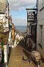 Clovelly High Street ~ Pads, Paws and Claws up the Cobbles by Simon Groves