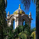 Balboa Park Through the Trees by heatherfriedman