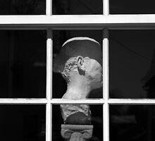 Ear by Michael  Herrfurth